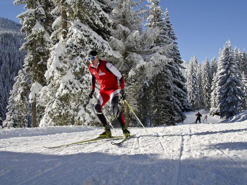 Langlaufen / Biathlon