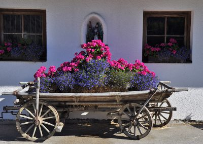 Blumenschmuck vorm Haus