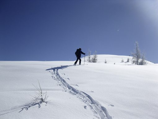 Skitouren & Schneeschuhwanderungen